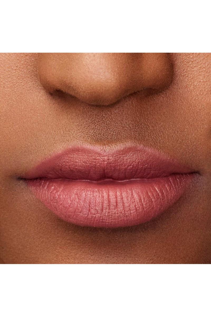 Lip Maestro 501 Liquid Lipstick image number 3