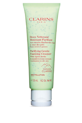 Purifying Gentle Foaming Cleanser