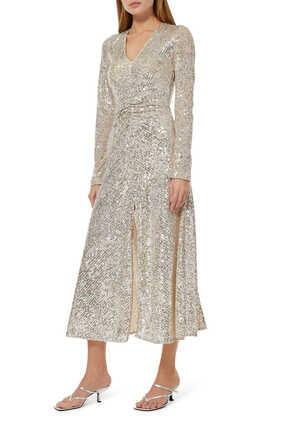 Sierra Sequin Embroidered Dress