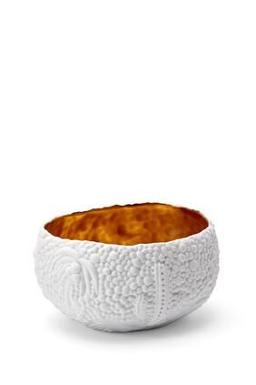 Haas Mojave Small Dessert Bowl