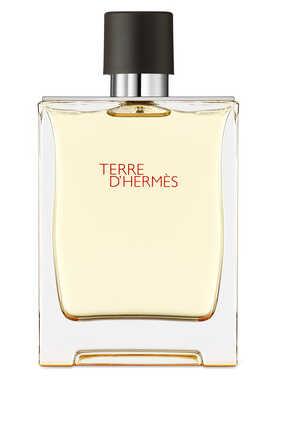 Terre d'Hermès, Eau de toilette, 30 ml travel spray and 125 ml refill