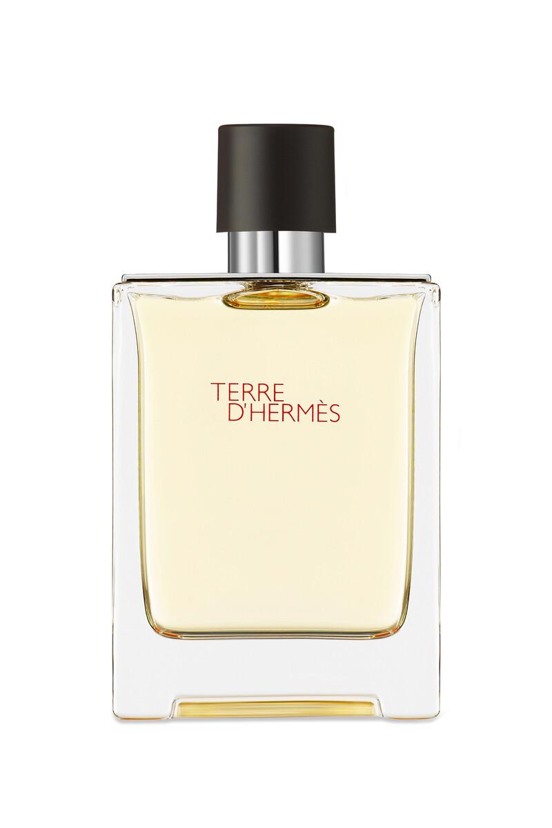 Terre d'Hermès, Eau de toilette image number 1