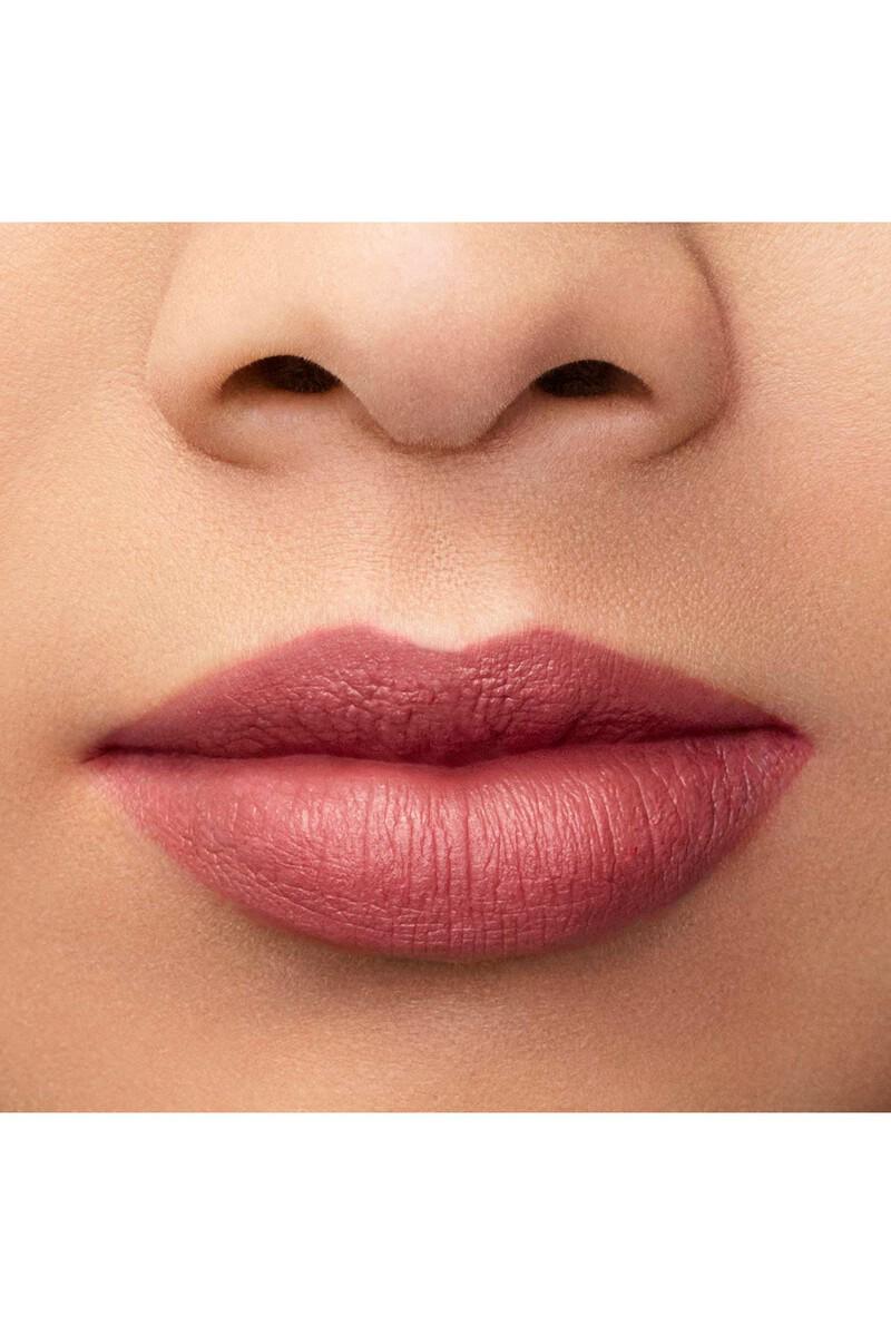Lip Maestro 501 Liquid Lipstick image number 5